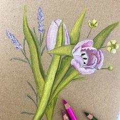 Botanical Art, Tinkerbell, Disney Characters, Fictional Characters, Disney Princess, Videos, Instagram, Art Print, Tinker Bell