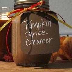 Vegan Pumpkin Pie Creamer:   Ingredients 2 cups of Almond Milk (vanilla sweetened) 4 tablespoons of organic pumpkin puree 1 teaspoon of Cinnamon 1/2 teaspoon of Nutmeg 3 tablespoons Maple Syrup
