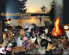 Everyone had a great time at #lakewithpetie!