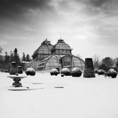 Items similar to Black and White Landscape Fine Art Photography, size, mount size, Art Pigment Print, Palm House Study 1 - Vienna 2011 on Etsy Black And White Landscape, Museum, Vienna, Fine Art Photography, Taj Mahal, Saatchi Art, Palm, Louvre, Classic