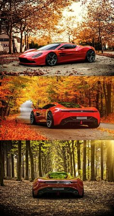 Aston Martin & Fall in the Northeast . . . Perfect combination!
