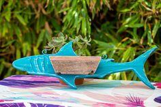 A very handsome shark planter for the garden 🦈 #sharkweek #shark #succukentplanter #succukent Succulent Wall Planter, Wood Planters, Succulent Arrangements, Wooden Containers, Succulents In Containers, Fence Boards, Dish Garden, Air Plants, Handmade Wooden