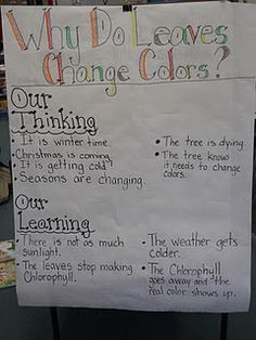 This concept of 'our thinking' and 'our learning' can be used for any age group Kindergarten Inquiry, Inquiry Based Learning, Project Based Learning, Literacy, Fall Preschool, Preschool Science, Preschool Themes, Science Classroom, Autumn Activities