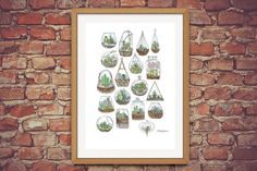 A4 Terrarium Print  Pen & Watercolour by BrittanyDaviesArt on Etsy
