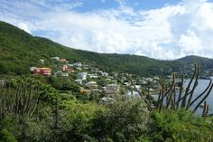Bequia at St Vincent and the Grenadines #bequia#stvincent#caraibconnexion#
