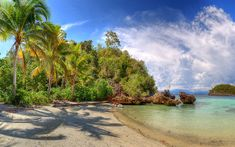 Download wallpapers tropical islands, beach, ocean, palm trees, Lelintah, West Papua, Indonesia