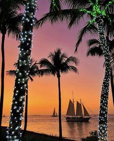 Christmas Shots, Christmas Ideas, Cruise Italy, Key West Hotels, Sailing Cruises, Sailing Holidays, Pine Island, Celebration Around The World, Key West Florida