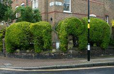 Topiarized elephants at the Chelsea Fringe. Gardenista