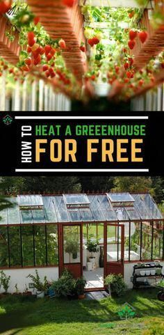 "How to heat a greenhouse for free: You cannot heat a greenhouse completely free! you will always have to spend some money initially. The best method is to heat the greenhouse using solar powered panels as the life of these panels are too long so it will keep on heating your greenhouse for quite long. #greenhouse #gardening #""greenhouses"""