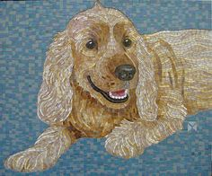 Donna Van Hooser Abby Grouted