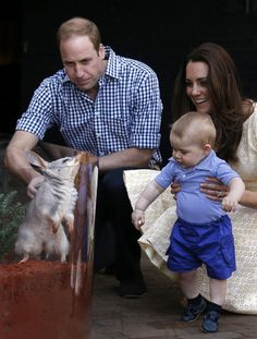 Catherine, Duchess of Cambridge and Prince William, Duke of Cambridge watch their son Prince George of Cambridge look at an Australian animal called a Bilby, which has been named after the young Prince, during a visit to Sydney's Taronga Zoo