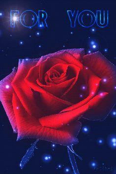 Wallpaper Nature Flowers, Beautiful Landscape Wallpaper, Flowers Gif, Rose Wallpaper, Cute Wallpaper Backgrounds, Beautiful Landscapes, Beautiful Love Pictures, Beautiful Gif, Beautiful Roses