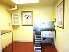 Dog washing station for the wash rack oooohis would be great good height plus i love the idea of a dedicated blowdryer and clipping table grooming shoppet groomingdiy dog washdog solutioingenieria Choice Image