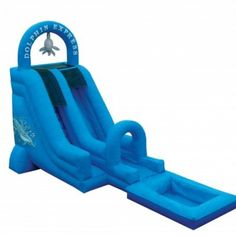 Dolphin Express Water Slide
