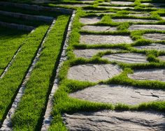 Natural stone paving with lush grass growing between