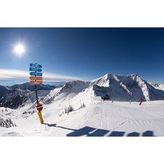 Blue skies on the path to paradise.   #snowbird #bluebird #powder #tgif