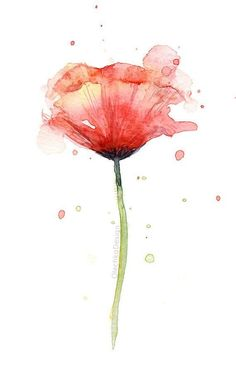 Red Poppy Watercolor Flower Art Print Poppies Atmospheric