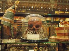 Skull of a deceased relative, painted red and decorated with shells. At the Pitt Rivers Museum, Oxford.