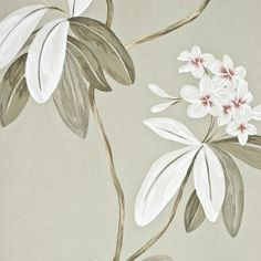 Oleander Floral Wallpaper Contemporary large floral print wallpaper on grey background with pewter, white and orange design.