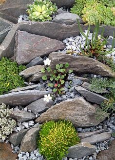 Erstaunlich Garten Ideen Mit Steingarten – Y… - What You Need To Know About Gardening Landscaping With Rocks, Front Yard Landscaping, Backyard Landscaping, Landscaping Ideas, Backyard Ideas, Gardening With Rocks, Sloped Backyard, Backyard Layout, Modern Backyard
