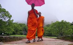 Comprehensive guide to choose the best time to visit Sri Lanka. Based on official rainfall data and travel expert opinion. Travel Expert, Sri Lanka, Posts, Blog, Fashion, Moda, Messages, Fashion Styles, Blogging