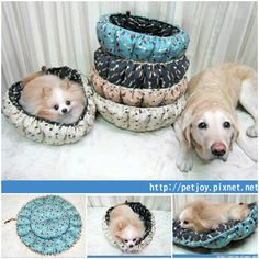 246 best sewing for the puppy dogs images on pinterest dog diy cute pumpkin bed for dogs solutioingenieria Image collections
