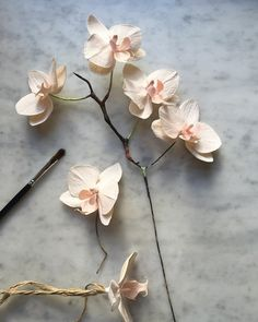 "1,293 Likes, 38 Comments - Tiffanie Turner (@tiffanieturner) on Instagram: ""Getting there #paperflowers #botanicalart #dsfloral #paperart #paperorchid"""