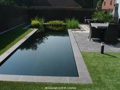 zwemvijver - Bing Images