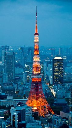Tokyo Tower - went as high as we could up here! The view!! November 2014