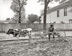 1905, South Carolina