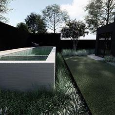 MINT Pool + Landscape Design (@mintdesignau) • Instagram photos and videos Swimming Pool Designs, Swimming Pools, Pool Landscape Design, Pool Landscaping, Mint, Photo And Video, Videos, Outdoor Decor, Photos