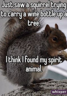 Best Most funny quotes and Funny pics of this week | Quotes and Humor
