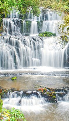 Purakaunui Falls in the Catlins, New Zealand. An essential Part of a 3 Week South Island Itinerary.