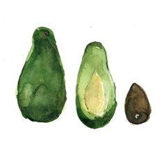 Avocado Study art print of original watercolor painting, Avocdado green, brown, still life, botanical, kitchen art, kitchen decor on Etsy, $21.00