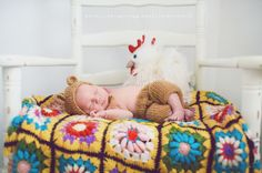my four hens photography, newborn inspiration