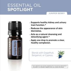 Juniper Berry essential oil is excellent for toning and beautifying the skin. Add one drop to your daily moisturizer to help promote a clear, healthy complexion. #juniperberryweek  Learn more about Juniper Berry in our latest blog post: http://doterrablog.com/doterra-juniper-berry-essential-oil-spotlight-2/