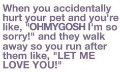 I do this EVERY time I step on my Cat! Haha! I'm a Crazy Cat Chick!