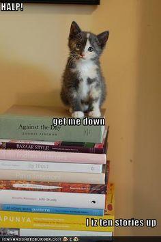 """""""HALP!                                                                   get me down          I iz ten stories up"""