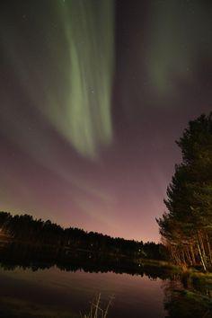 Yötaivas oli vihreä – Parhaat lukijoiden revontulikuvat täällä   Yle Uutiset   yle.fi