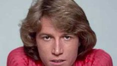 Andy Gibb - I Just Want to Be Your Everything (HQ with lyrics), via YouTube.