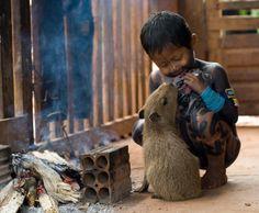Curumim Kayapó brinca com a capivara da aldeia.