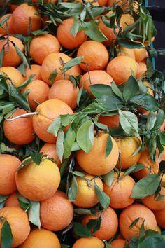 Oranges at a street market, Rome