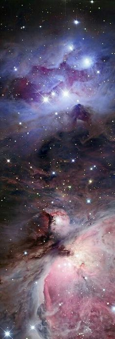 The Running Man Nebula with part of the Orion Nebula at bottom. also pictured is the thick, dusty Dark Nebula that splits them Cosmos, Constellations, Galaxy Space, Galaxy Art, Space And Astronomy, Amazing Spaces, Deep Space, Celestial, Science And Nature
