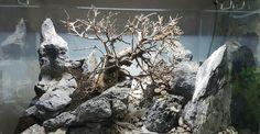 Galerie Wasserwelten in Castrop Rauxel