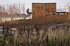 Gallery - Qunli Stormwater Wetland Park / Turenscape - 13