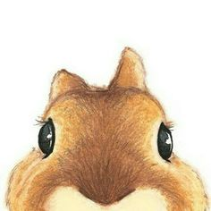 Botones Rabbit Illustration, Illustration Art, Art Illustrations, Cute Bunny, Bunny Rabbit, Cute Animal Memes, Cute Animals, Owl Watercolor, Owl Cartoon
