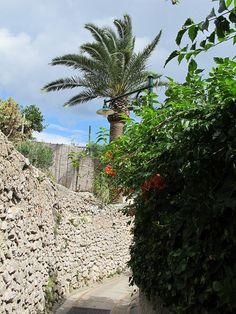 Capri, Italy Italy Trip, Italy Travel, Travel Around The World, Around The Worlds, Capri Italy, Vatican, Rome, King, Beautiful