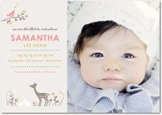 Darling Baby - Girl Photo Birth Announcements in Posies | Petite Alma