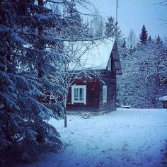 Old wooden Finnish cottage in the middle of nowhere. Located near Joensuu, North Karelia.