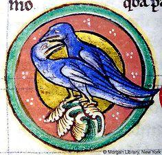 Medieval Bestiary : Turtledove Gallery